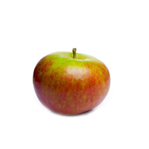 Rød Cox æble 1 stk.