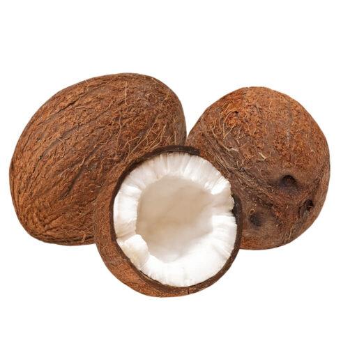 Kokosnødder 1 stk Dom R.