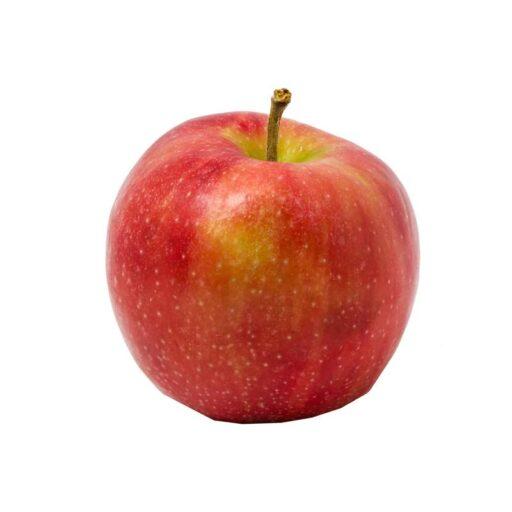 Graasten æble 1 stk. fra Lyby