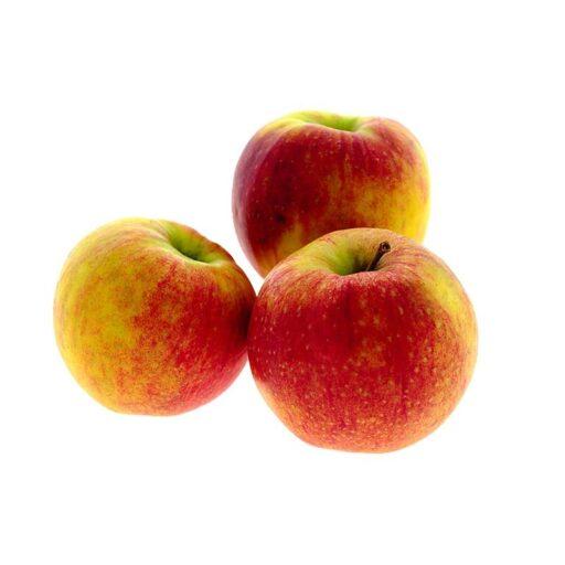 Æbler Jonagored -0