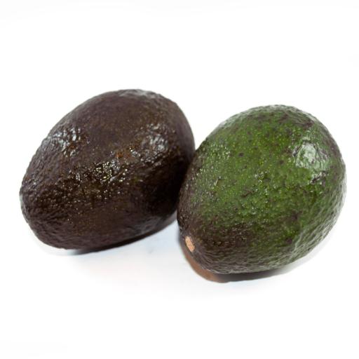 Øko Avocado i bakke-0