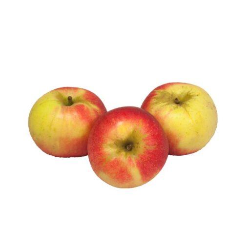 Æbler - Discovery -0