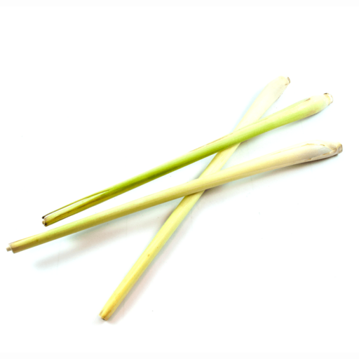 Citrongræs 1 bdt (10 stk) THA