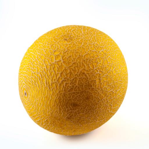 Galia melon-0