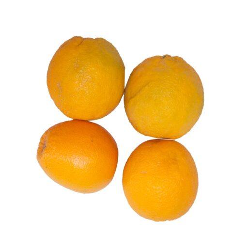 Økologiske Appelsiner 1 kg.