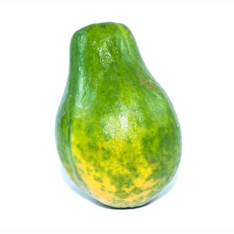 Papaya-509