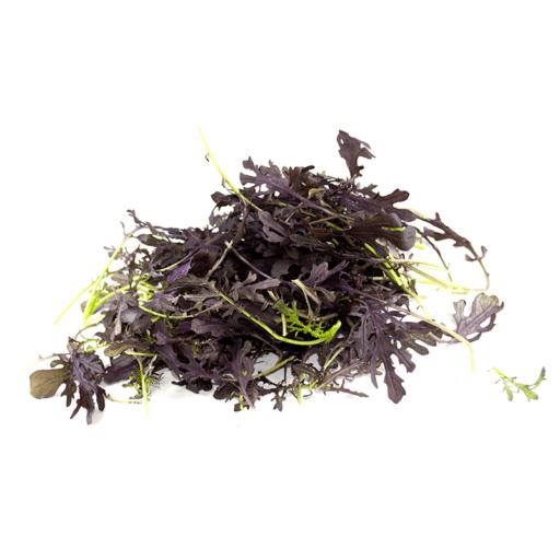 Rød Mizuna Salat 100 g BK