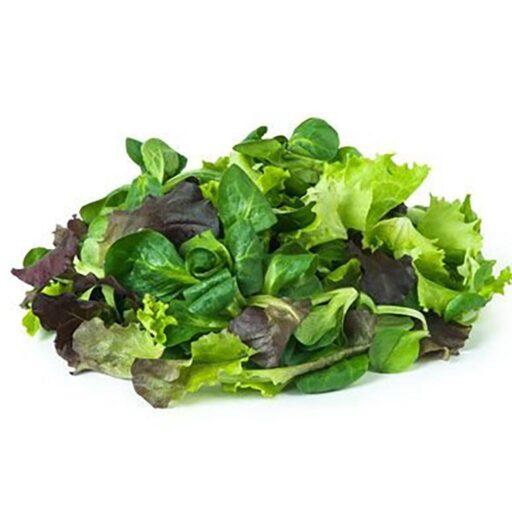 økologisk salatmix